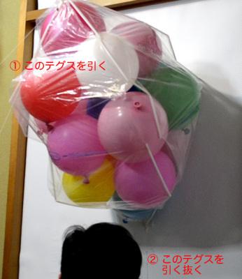 2013_3_5つぼみ実験01.jpg