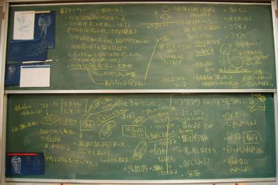 2010_10_16_01.jpg